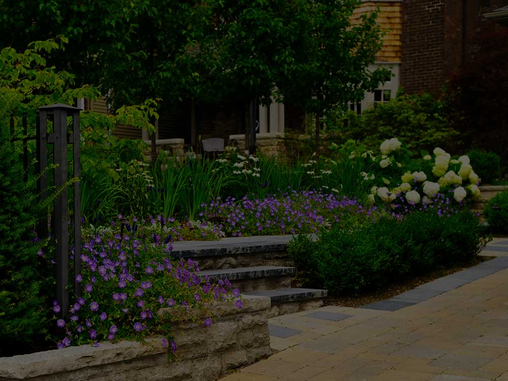 Point Washington Commercial Garden Design