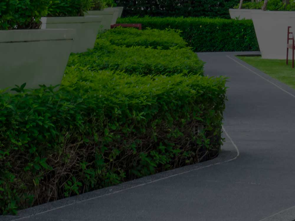 Point Washington Commercial Landscaping