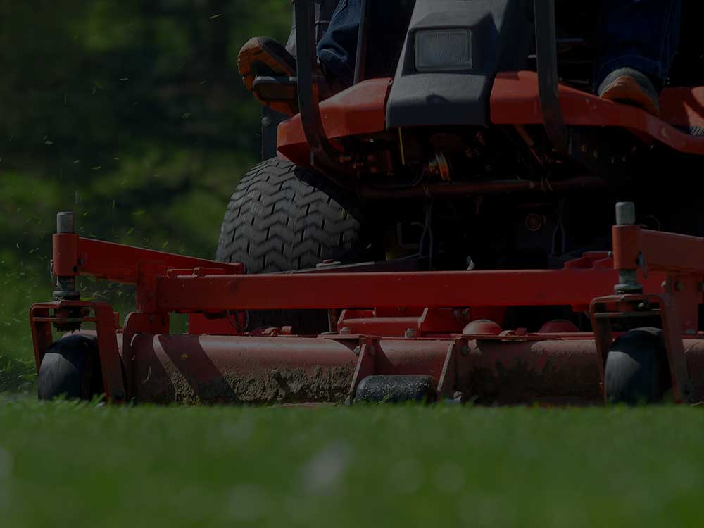Point Washington Commercial Lawn Mowing