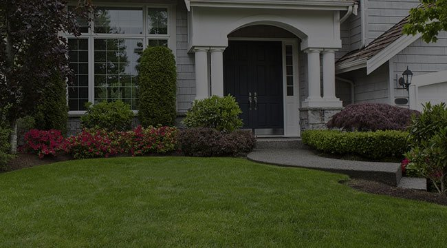 Point Washington Landscaping